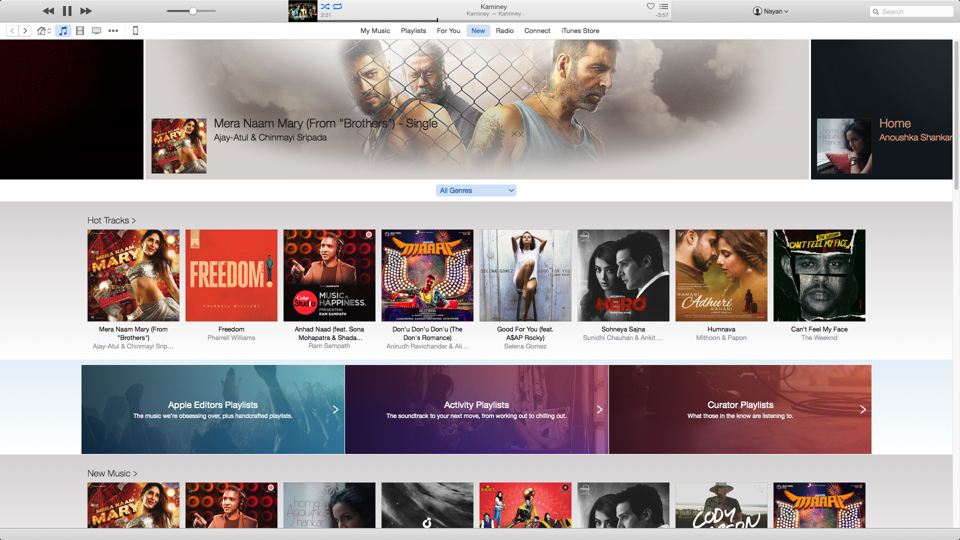 Apple Music New Section